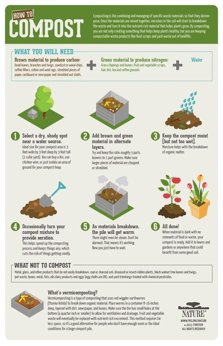 Infographic: How-To Compost | green infographics | Scoop.it