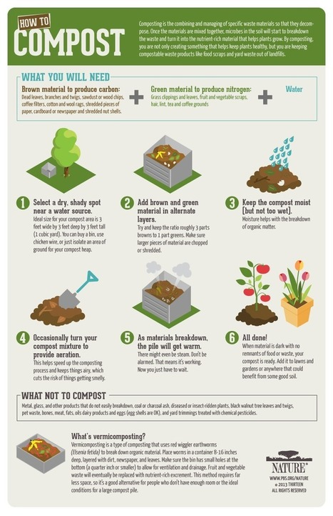 Infographic: How-To Compost | Waste | Scoop.it