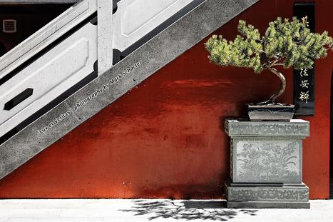 Lux et Veritas   photography by Mark Schacter   Ottawa Artists   Scoop.it