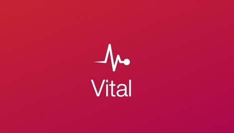 Vital - a lightweight CSS Framework for Web app | WordPress and Web Design | Scoop.it