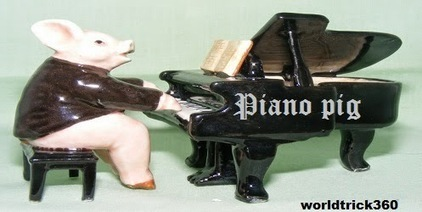 Pig playing a piano | Worldwidenetworkings and worldtrick360 | Scoop.it