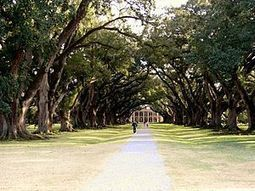 Southern Style RiverCruises | Oak Alley Plantation: Things to see! | Scoop.it