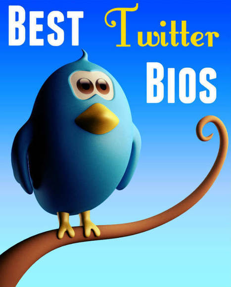 What can you learn from the Best Twitter Bios? | Muscles and Marketing | Scoop.it