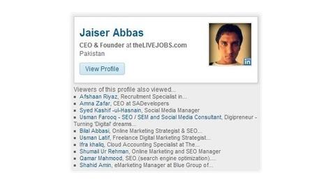 Build Your Own LinkedIn Member Profile Plugin | EmBlogger.com | Scoop.it