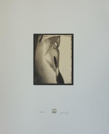 Tirage palladium sur papier Torinoko | Photographic Folio | Scoop.it