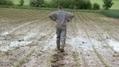 France Bleu | Un suicide tous les deux jours chez les agriculteurs | whynotblogue | Scoop.it