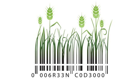 How farm to market-based solutions can take organic to the next level | Ecoideaz.com | Scoop.it
