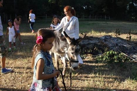 Ecco la scuola del futuro: nel bosco, senza banchi, e a insegnare è la natura | La Stella | Lim | Scoop.it