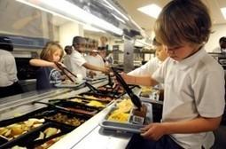 Las normas sociales influyen sobre las conductas alimenticias ... - Somos Pacientes   educación infantil   Scoop.it