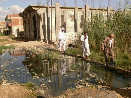 Gharbiya residents report spread of typhoid as govt denies infections | Égypt-actus | Scoop.it