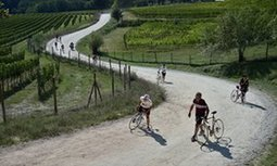 A classic cycle ride in Italy's Chianti country | Italia Mia | Scoop.it