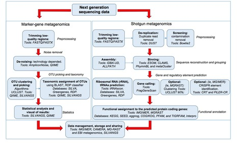 Metagenomics: Tools and Insights for Analyzing Next-Generation Sequencing Data Derived from Biodiversity Studies | Genomics and metagenomics of microbes | Scoop.it