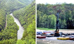 Don't Let Fracking Boom Destroy PA State Forests | EcoWatch | Scoop.it