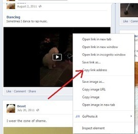 How to Download Facebook Videos ~ muchTech | MuchTech Daily Publication | Scoop.it