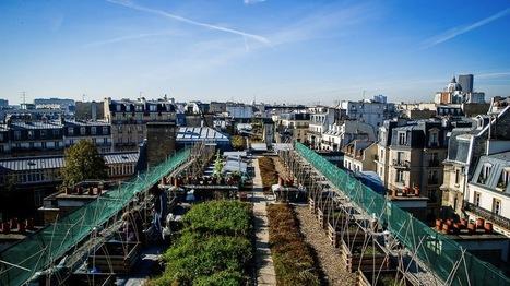 Paris, ville comestible? | Alimentation Générale | AG | Environnement urbain | Scoop.it