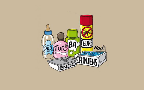 France 2 : Un reportage sur les perturbateurs endocriniens | Hygiène Plus | Scoop.it
