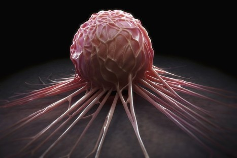 The Revolutionary Gene-Editing Technique That Reveals Cancer's Weaknesses | Genetic engineering and Human genetics, background reading and resources for IB | Scoop.it