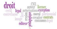Le droit d'auteur et le droit à l'image > Produits | Formation et culture numérique - Thot Cursus | Education à l'image | Scoop.it