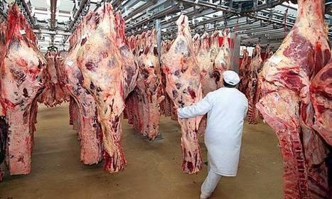 Halve meat consumption, scientists urge rich world   HumanGeo@Parrish   Scoop.it
