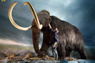 6 Extinct Animals That Could Be Brought Back to Life   Cool Science News   Scoop.it