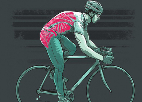 Core Workouts for Cyclists | Bicycling Magazine | Power :: Endurance :: Fitness | Scoop.it