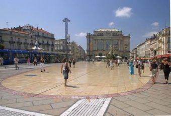 Montpellier: pari gagnant sur la matière grise | Montpellier | Scoop.it