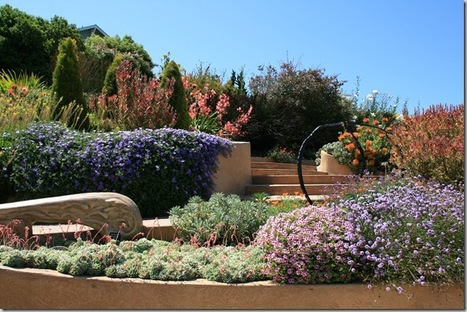 Wildlife Garden Design Tip: Choose a Simple Color Palette | North Coast Gardening | Annie Haven | Haven Brand | Scoop.it