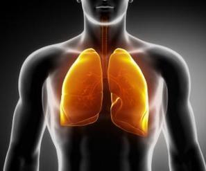 Majority of weight loss occurs 'via breathing'   Salus (Health)   Scoop.it