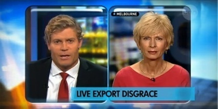 The Project covers live export disgrace | Animals Australia | The Wild Planet | Scoop.it