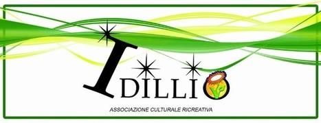 Ristorante IDILLIO - Quinzano - Varese | Ristoranti Pub Ritrovi Vegan-Vegetariani | Scoop.it