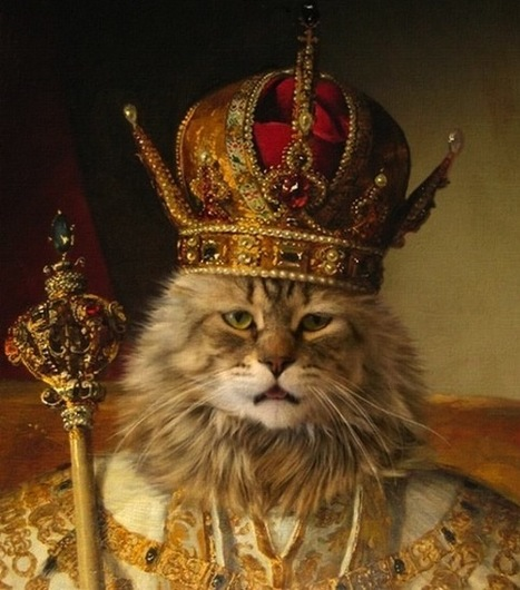 Avec CatGenius même la litière du chat peut être hackée   ppa.forever   Scoop.it