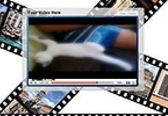 Sweet, Funny Sleeping Cat | make money online | Scoop.it