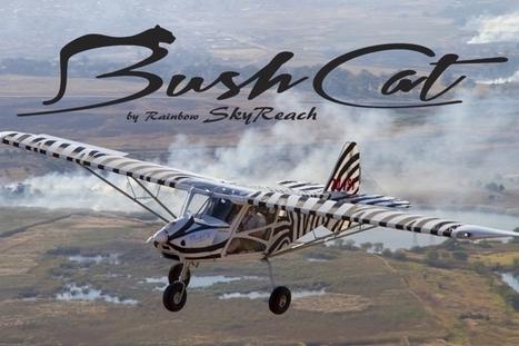 AeroSport LLC - SkyReach BushCat Light Sport Aircraft - Home   Light Sport Aircraft   Scoop.it