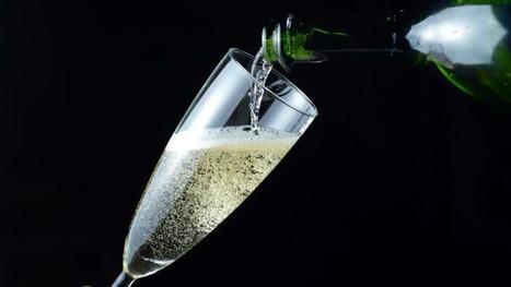 Champagne : les vendanges commencent déjà | Le vin quotidien | Scoop.it
