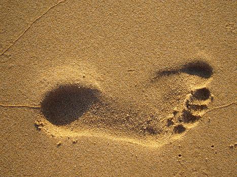 Incresasing your 'academic footprint' | Social media & academia | Scoop.it