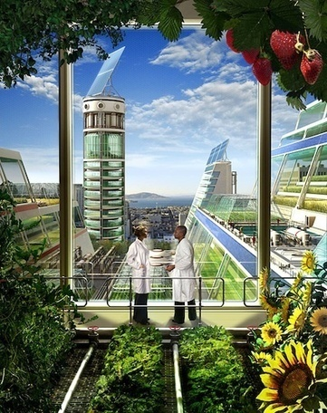 Can Urban Agriculture Feed a Hungry World? | Arrival Cities | Scoop.it