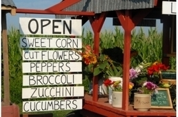 Local Businesses: Facebook Wants Your Information - AllFacebook | GoGo Social - B2B SMB Opportunity | Scoop.it
