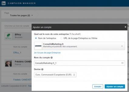Linkedin Ads, la publicité ciblée pour le B2B ! | SOCIAL MEDIA INTERACTION (bilingual) | Scoop.it