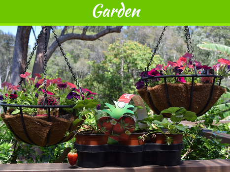 Modular Gardening or Gardening in a Box - What's the Best | MyDecorative | Scoop.it