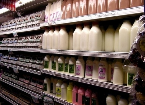 Lawmakers Could Cause Dairy Prices to Double | Organic Gardening, Farming, Lawncare, Landscaping & Eating :) | Scoop.it