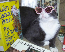 Mystery Fanfare: Fabulous Library Cats   Library Cats   Scoop.it