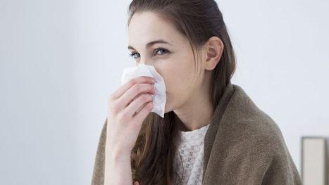 Les médicaments contre la fièvre amplifient les épidémies de grippe | Projet SF 2nd8 | Scoop.it