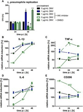 Legionella pneumophila -Derived Outer Membrane Vesicles Promote Bacterial Replication in Macrophages | Membrane vesicle trafficking | Scoop.it