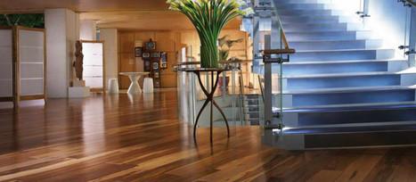 Carpet Cleaning Services inWestcheste | Organic Clean Carpet | Scoop.it