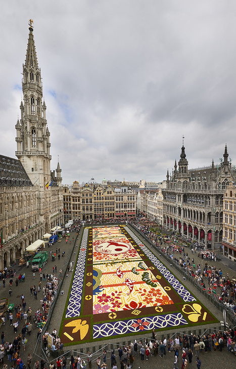 "600,000 Flowers Used to Create Colorful ""Carpet"" Stretching Across 1,800 Square Meters 