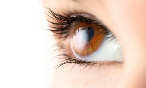 Collagen translates as healthy eyes (ScienceAlert) | Science for our everyday lives | Scoop.it