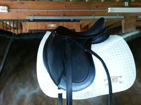 A DG Stackhouse Saddle - Part 2 | From the Equine Blogosphere | Scoop.it