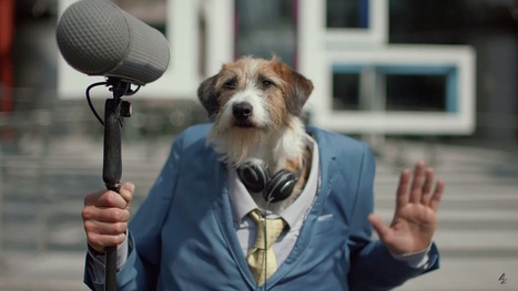 Weekly Ad Roundup - The Underdogs   Small Business On The Web   Scoop.it