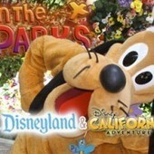 Disneyland Update: Mother Nature Shakes Things Up - MiceChat | Disney and Identity | Scoop.it