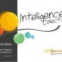 Intelligence collective : Le livre blanc co-écr... | Coaching & Creativity | Scoop.it